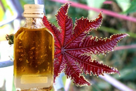 Касторовое масло от запора